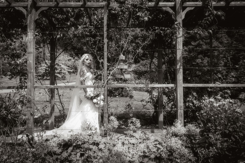 039_Bride-in-an-Irish-Garden