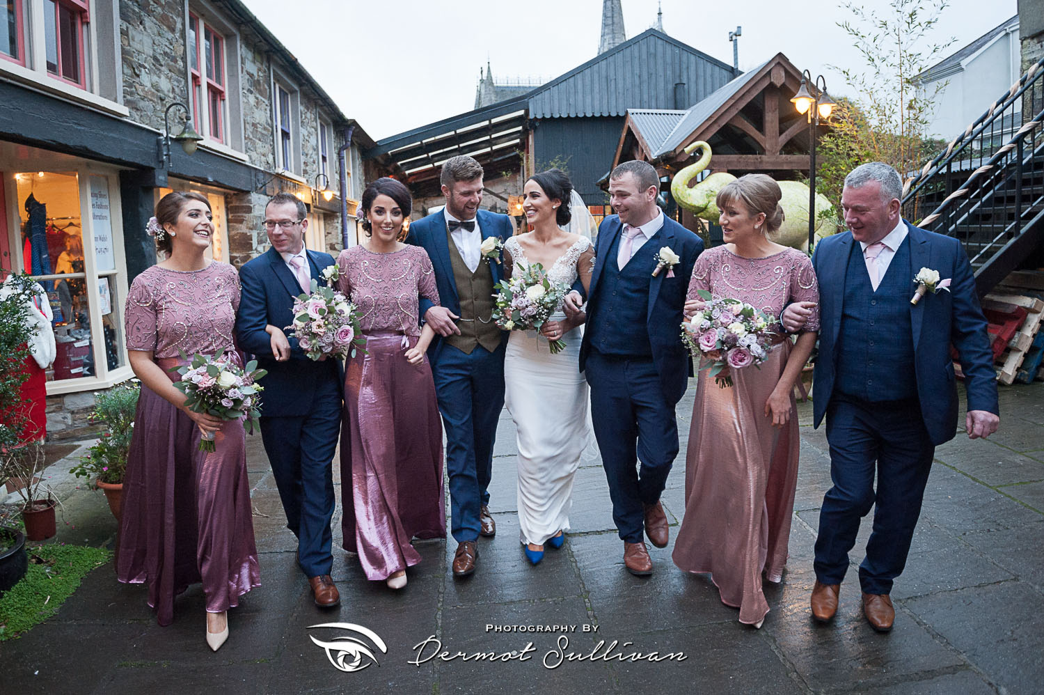 GAA Winter Wedding Photographs At Fernhill House Hotel Cork